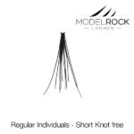 ModelRock Regular Short Knot Free
