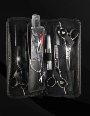 Zen Master Scissors Apprentice Student Three Scissor Kit Polished Silver 2